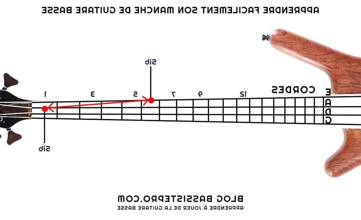 Comment comprendre la manche de la guitare ?