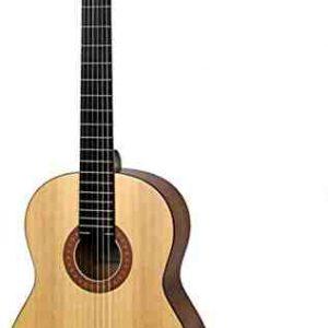 Qui a inventé la guitare normal ?